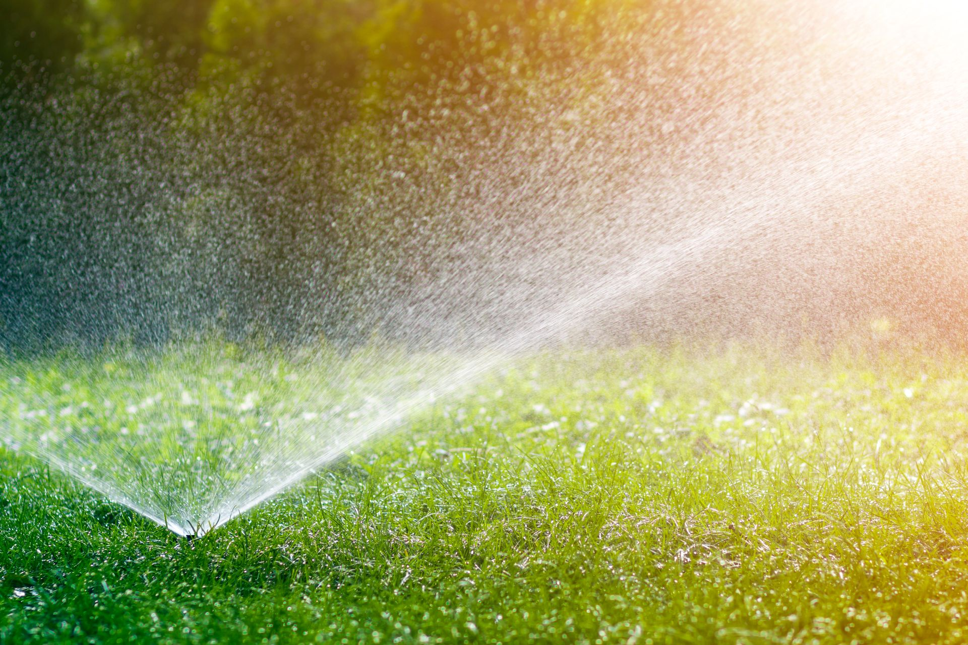 Cum se configurează un sistem de irigații rezidențial